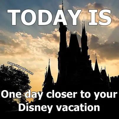 Why Do I Need Travel Insurance for My Disney Vacation?