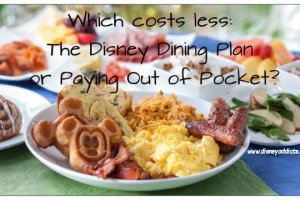 Which costs less DDP or OOP