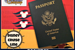 passport and documentation