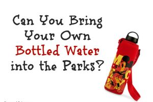 Can You Bring Your Own Bottled Water With You To The Disney Parks? 4