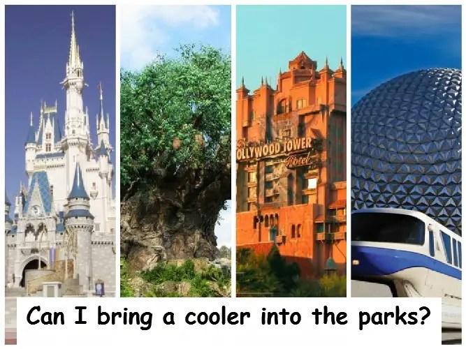 Can I Bring Outside Food into Walt Disney World