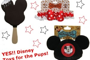 Does Disney sell toys for pets? 37