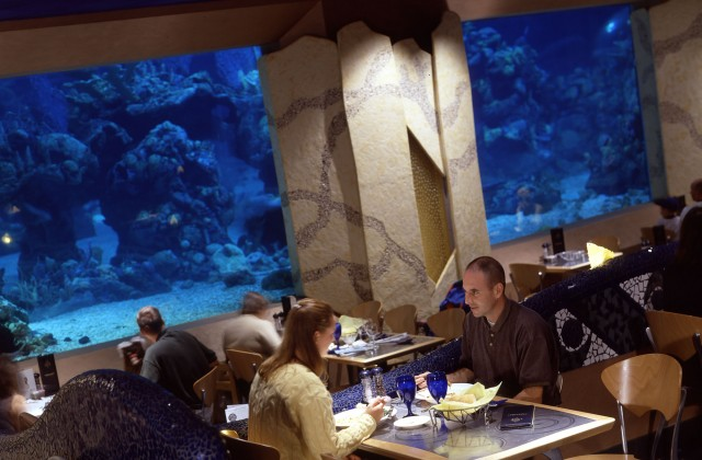 Is it possible to Dine at Disney without a reservation?