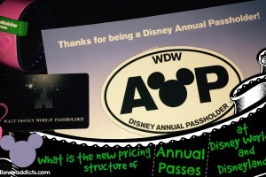 annual pass pricing