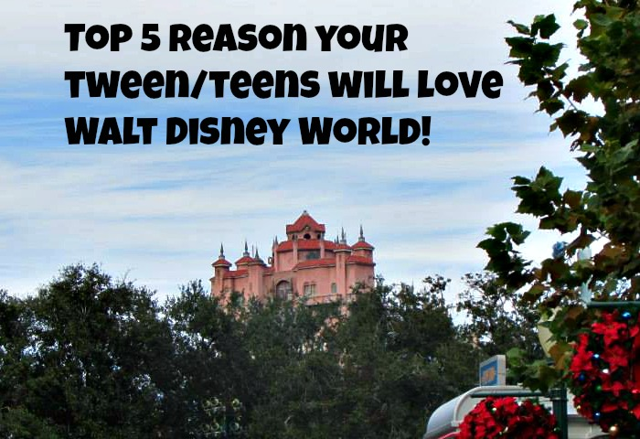 Top 5 reason your tween/teens will love Walt Disney World!