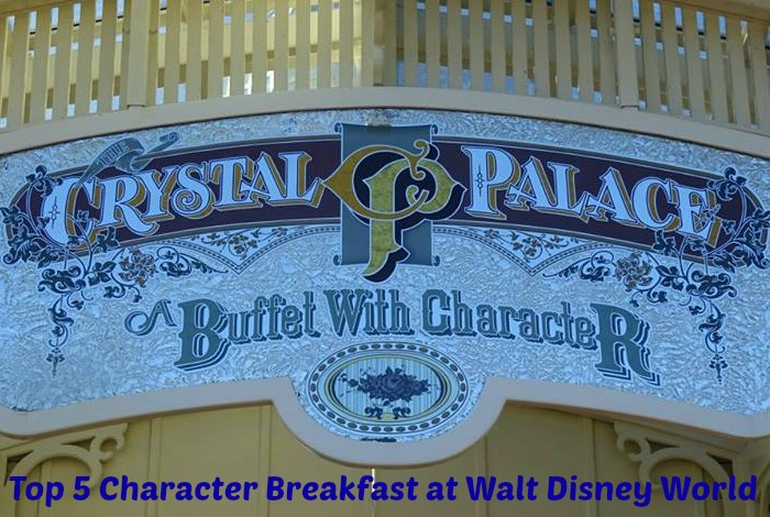 Top 5 Character Breakfast at Walt Disney World