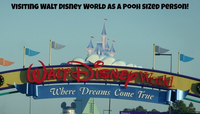 Visiting Walt Disney World as a Pooh sized person!