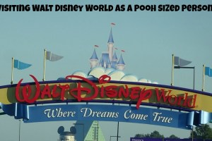 Visiting Walt Disney World as a Pooh sized person! 2