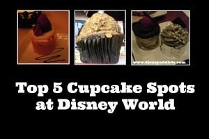 Top 5 Cupcake Spots at Disney World 1