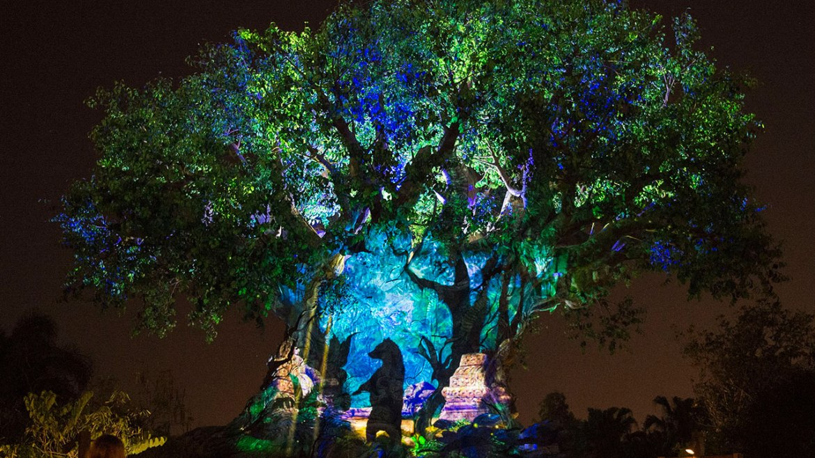 20 Things We Love About Disney's Animal Kingdom on Its 20th Anniversary