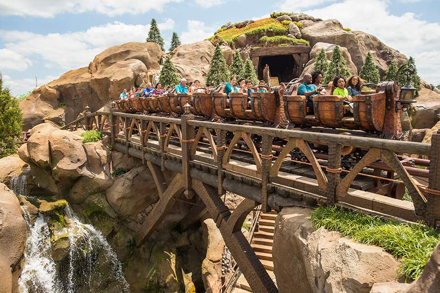 Disney World Attractions With the Longest Wait Times