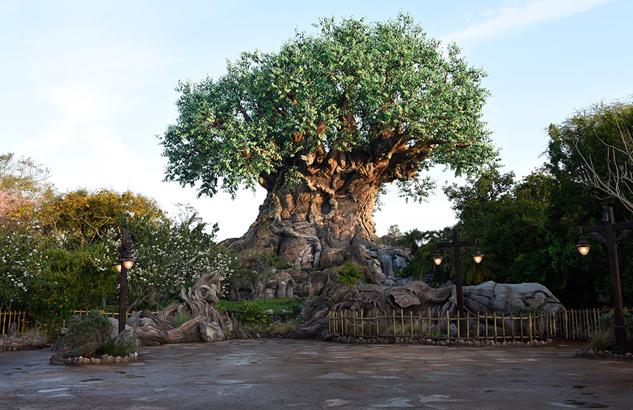 Family Fun Disney Podcast – Episode 4: Intro to the Animal Kingdom