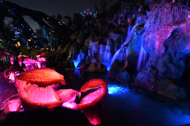 Tips For Getting the Best Photos at Pandora – The World of Avatar
