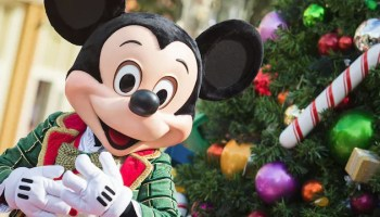 when will the christmas decorations go up at walt disney world
