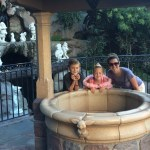 What Happens to the Coins Tossed in Disney Parks Fountains