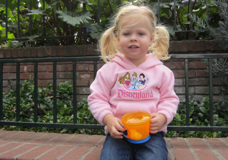 Can I Bring Outside Food Into Disneyland Parks?