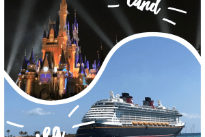 The Best of Both Worlds - Combining Disney World and Disney Cruise Line for the Ultimate Vacation! 82