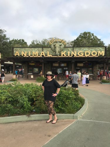 Best Day of the Week to Visit each Disney Park