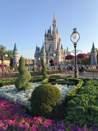 Days at Disney World
