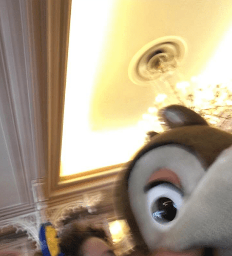 selfie fail characters