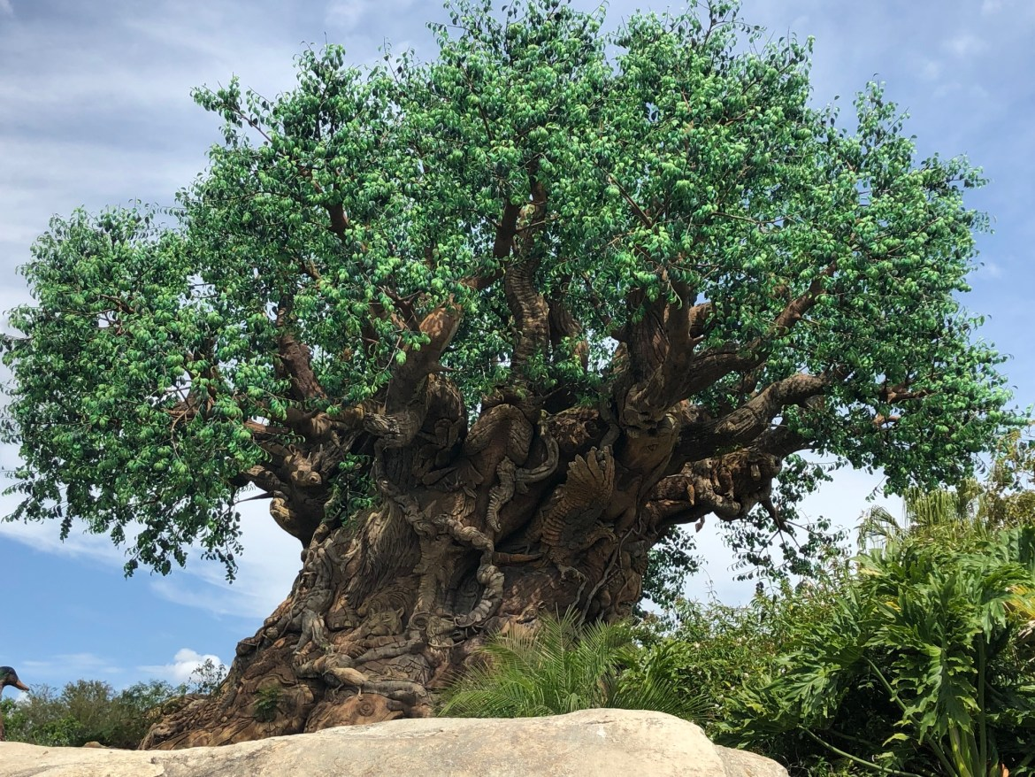 Top 5 Reasons Why You Shouldn't Skip Disney's Animal Kingdom