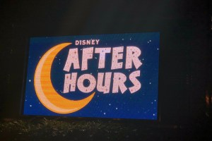 Are the Disney After Hours Events Worth It? 34