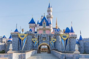 Spend Leap Day at Disneyland Resort with these Fun Experiences! 86
