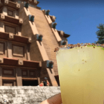 8 Epcot World Showcase Cocktails to try at Home 4