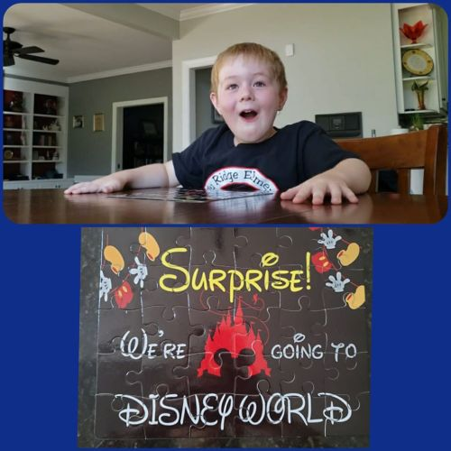 Disney surprise vacation