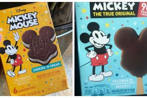 How to Get 5 of Your Favorite Disney Snacks While the Parks are Closed 73