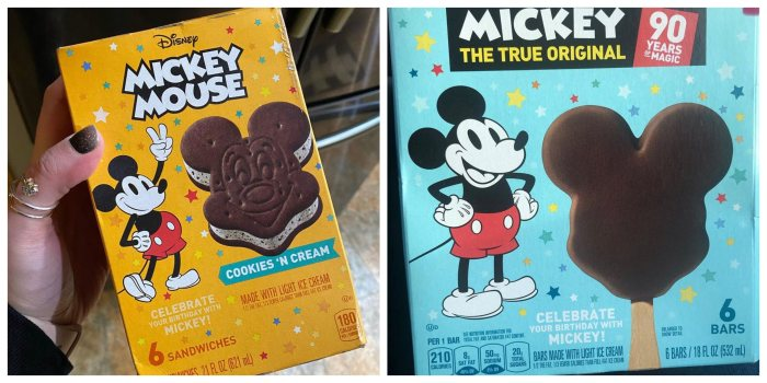 How to Get 5 of Your Favorite Disney Snacks While the Parks are Closed 2