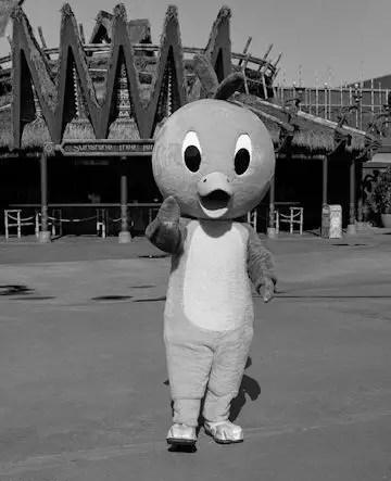 Who is the Orange Bird at Walt Disney World 4