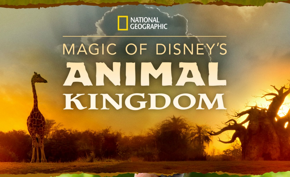 3 Reasons Why You Should Be Watching 'Magic of Disney's Animal Kingdom' on Disney+