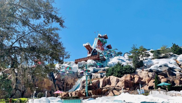 Why We Love Disney's Blizzard Beach Water Park 1