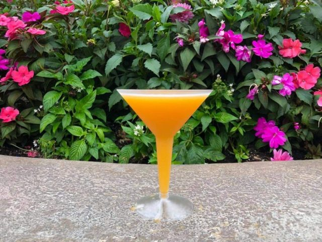 Our Top 3 Drinks in Epcot's World Showcase for Adults 5