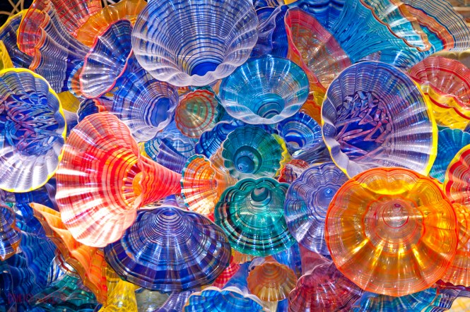 Dale Chihuly N Glass Art Work On Wonder Cruise Critic Message Board Forums