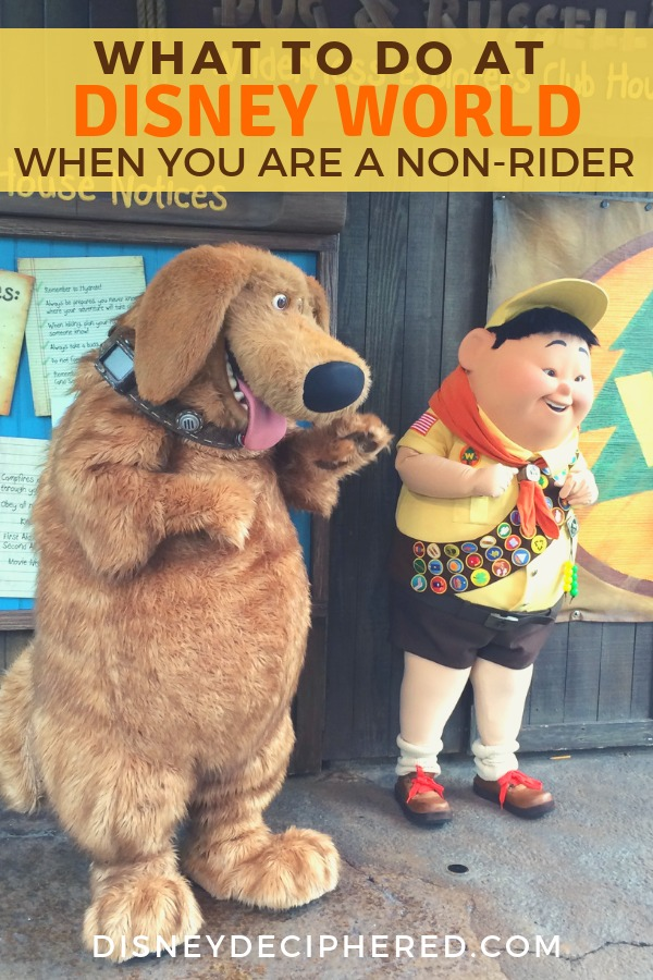 What can you do at Walt Disney World when you aren't on rides? Whether you don't like thrill rides or are spending time waiting thanks to Rider Switch, check out some of these entertaining things to do for non-riders. #disneyworld #disneydeciphered #waltdisneyworld