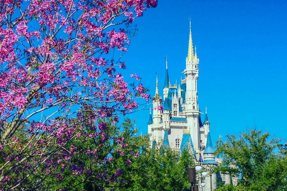 castle in spring,walt disney world