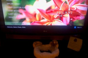 Aulani TV