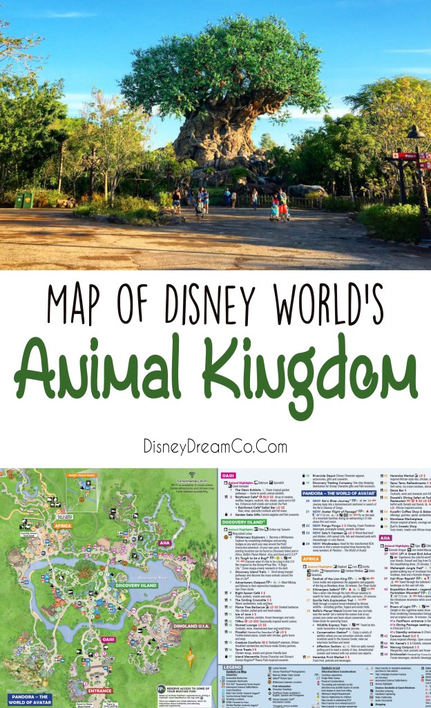 Animal Kingdom Map Walt Disney Map