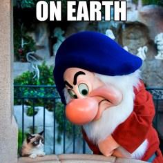 Disneyland Disney Side Social Media All Stars World Premiere Event Grumpy Cat Meme