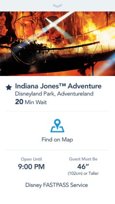 Official Disneyland App Attraction Wait Times