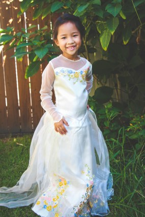 Disney Halloween Costume Guide Disneyexaminer Cinderella Wedding 3