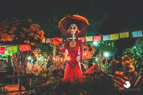 Disneyexaminer Disneyland Winter Wallpapers Dia De Los Muertos 3