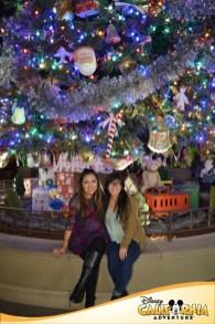 DCA Christmas Tree