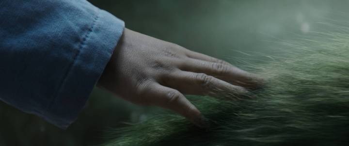 Pete's Petes Dragon Elliot Hand Fur