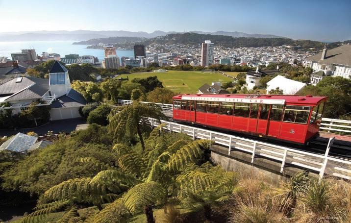Pete's Dragon New Zealand Setting Wellington Red Tram City