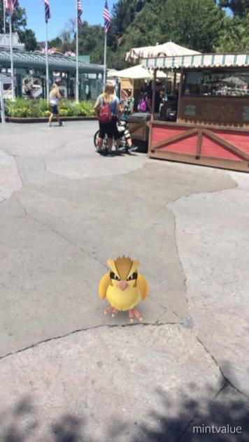 pokemon-go-frontierland-5