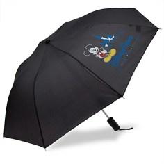 https://www.disneystore.com/umbrellas-accessories-mickey-mouse-disney-parks-umbrella/mp/1393709/1000300/