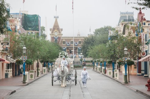 Ben and Kerry Leikin Fairytale Dream Disneyland Wedding Disney's Fairytale Weddings and Honeymoons Kleenex Someone Needs One Cinderella Horse and Pumpkin Carriage